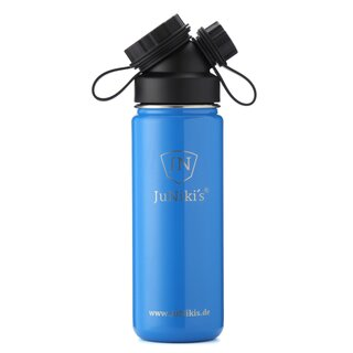 INSULATED STAINLESS STEEL FLASK // 18OZ // BLUE